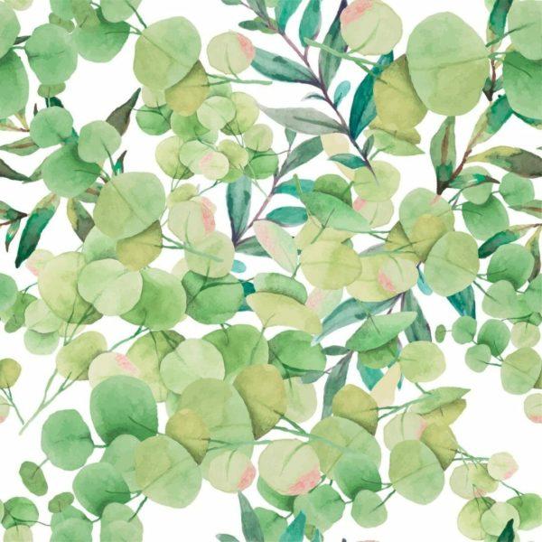 Green eucalyptus wallpaper sample