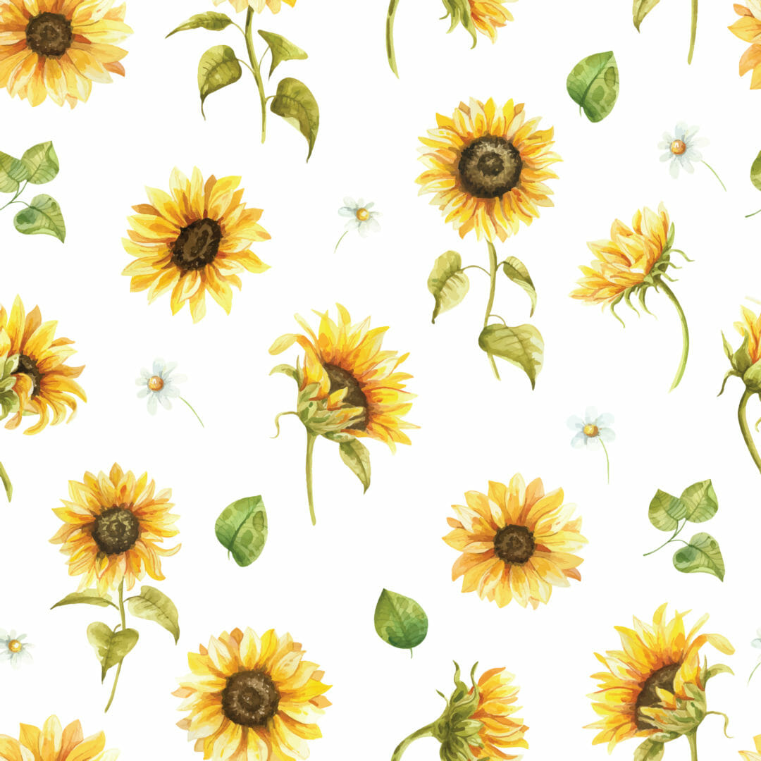 yellow and white sunflower peel and stick wallpaper