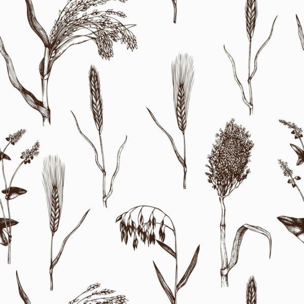 brown and white botanical plants peel and stick wallpaper