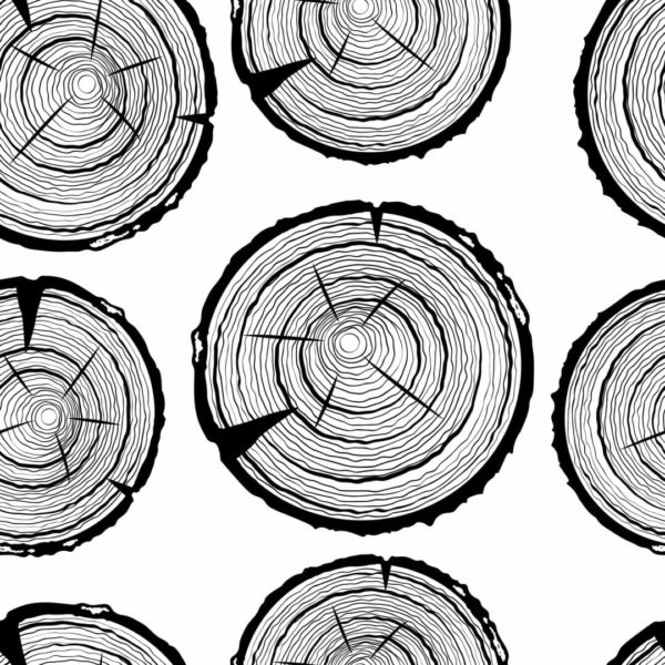 black and white tree trunk peel and stick wallpaper