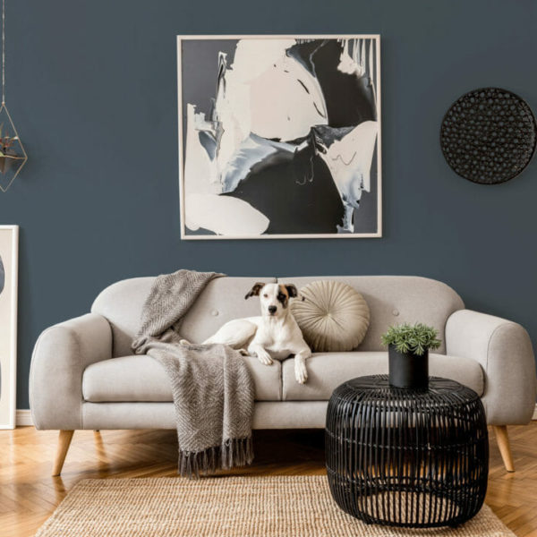charcoal solid peel and stick wallpaper