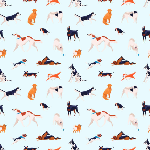colorful and blue dog wallpaper peel and stick