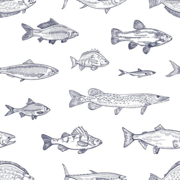 Blue fish wallpaper