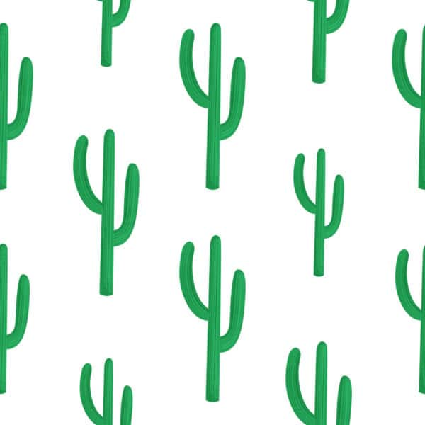 cactus peel stick wallpaper