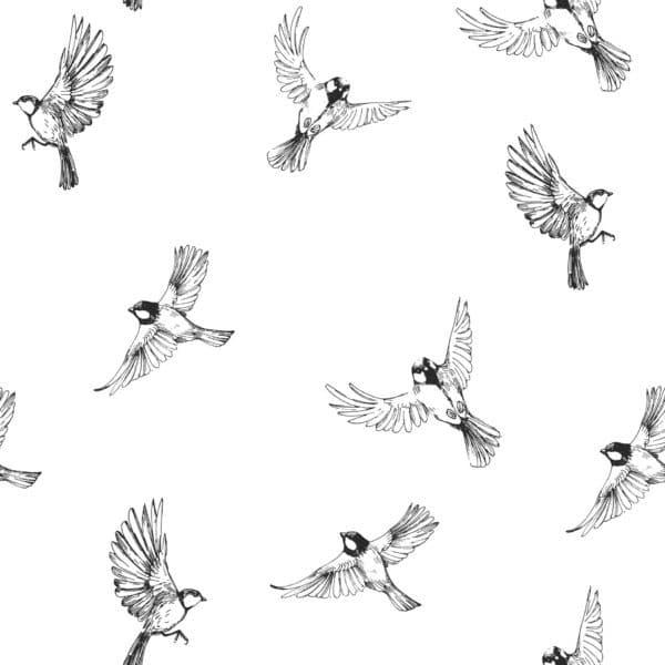 minimalistic sparrow peel stick wallpaper